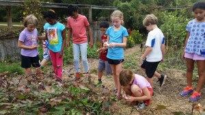 Fourth graders take the garden tour