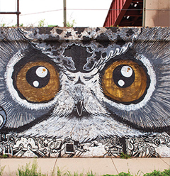 A detailed owl mural graces a concrete wall in Chicago.